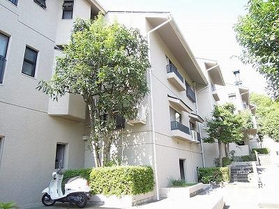 ベルエール芦屋/外観4 芦屋市東山町のマンション